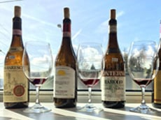 Spectaculars wines from Barolo for us to enjoy