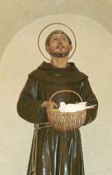 Statue of Saint Francis near his tomb - dove is real