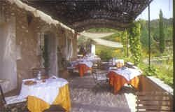 Tranquil setting for a lovely long meal overlooking the gardens