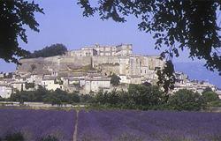 grand chateau and lavender vista one of many beautiful sights as we tour provence