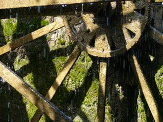 Life driven by the water-wheel