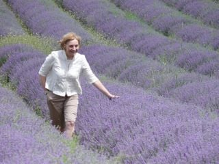 Precious moment touring the blooming lavender fields