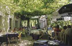 Lovely small restaurant off-the-beaten-path in Provence, nestled under linden trees with lots of charm, delightful food and locals
